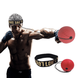 Boxe Ball PushUpMonster